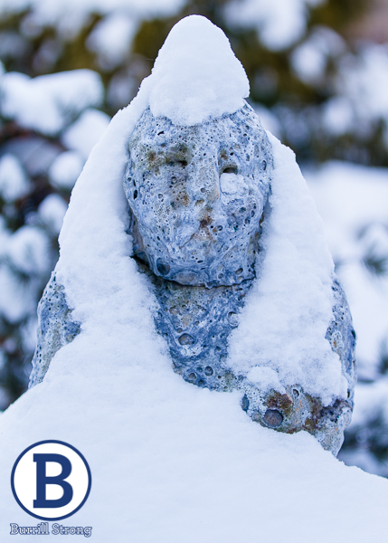 winter20150111-217